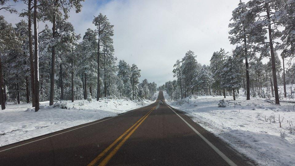 Snow Payson
